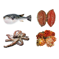 Alive best various seafood sea cucumber, octopus, tiger puffer, sea squirt