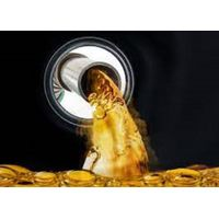 UCL ENERGY HOLDINGS thumbnail image