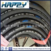 SAE 100 R2at Flexible High Pressuse Rubber Hydraulic Hose thumbnail image