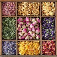 Home Decor - Potpourri