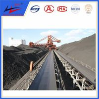 Conveyor Roller Belt Conveyor Conveyance Equipment OEM