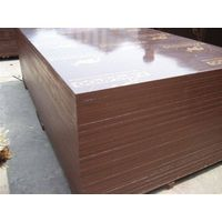 Brown film faced plywood, Kangaroo brand