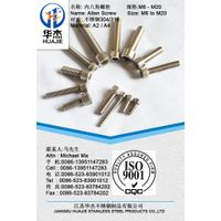 Stainless Steel 316 Allen Screw