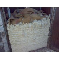Selling all types of raw wool thumbnail image