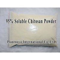 Soluble 95% Chitosan Oligosaccharide Powder