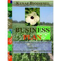 Kenaf Biodiesel Farming Business Plan 100 ha
