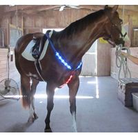 Led lighted horse chest plate safety harness