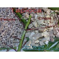 Thai Tapioca Pellets 65% (ANIMAL FEED GRADE)