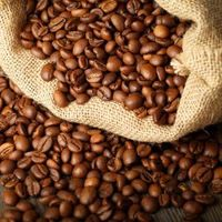Robusta and Arabica Coffee Beans from Cameroon