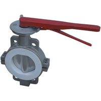 Ductile Steel Lug Type Valve Pvc Butterfly Valve