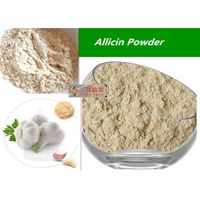 Organic garlic powder 80-100mesh / Garlic Extract Allicin Powder