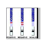 HGH rapid test strips