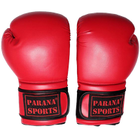 Parana Sports Boxing Gloves with Special Offer thumbnail image