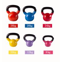 Spray Paint Kettlebell/Gym fitness/Vinyl Kettlebell