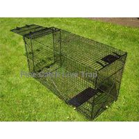 Collapsible Large Size Dog Trap