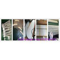 Free sample waterproof 300led/roll 5050 led strip,SMD 5050 lighting led,12 volt led lights strip thumbnail image