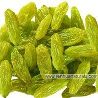 Manufacture High Quality Organic Raisins, Green Raisins, dried grape,dried raisin
