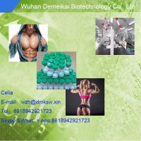 Reliable Supplier MGF mechano growth factor for bodybuilders