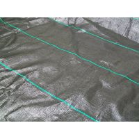 Supply pp ground cover, pp weed control mat