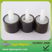 customize rare earth plastic bonded magnet