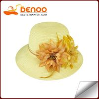 Board Brimmed Hat