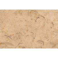 Catrina Marble - Egyptian limestone (Relic Grey) - CIDG