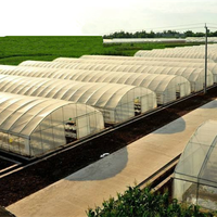 Agriculturer greenhouse PE film
