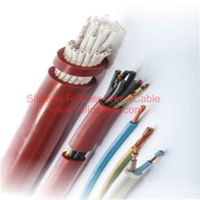 AGR Series Silicone Rubber Insulated Wire&Cable