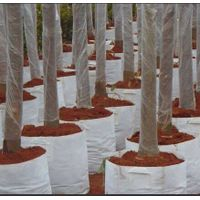 Tree root control bags