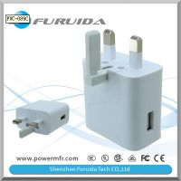 Foldable Mechanism Mains Charger