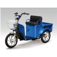 Electric Tricycle Scooter/Electric Cargo Scooter/Electric Mobility Scooter/Old-Men Scooter thumbnail image