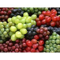 Fresh Fruits thumbnail image