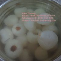 CANNED LYCHEE FROM VIET NAM AMY +84 1683 655 628