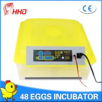 Hot Sale HHD Factory Supply Full Automatic Chicken Egg Incubator for Sale YZ8-48