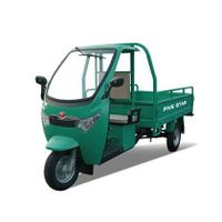 Foton Lovol The Electric Tricycle FT612TH(A)