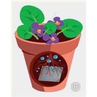 Water gel for plants thumbnail image