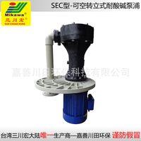 Vertical pump SEC5022/5032/6552/6572/65102/100152 FRPP