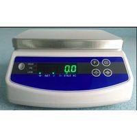 WP waterproof weighing scale
