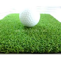 golf  Synthetic grass thumbnail image