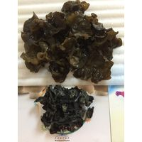 Thin Dried Black Fungus from Northeast