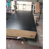 F17 shuttering plywood,film faced plywood
