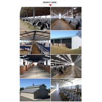 Automation and Sanitary Prefab Steel Structure Cow Shed with Corrugated Steel Sheet