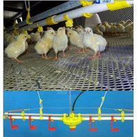 Water drinking system for poultry farming