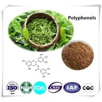 Polyphenols  Cas number:989-51-5 90% 1kg/bag