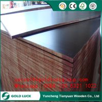 12mm balck Film Faced Marine Grade Plywood for Concrete Formwork
