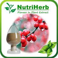 Natural Guarana Extract Powder 10%-22% Caffeine