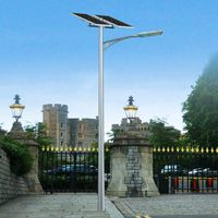 Professional Design Economical Type 6m Pole 30W Solar LED Light Street Light