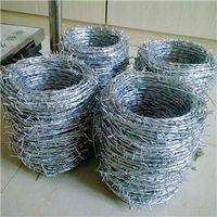 Electro Galvanized Barbed Wire     concertina wire for sale thumbnail image
