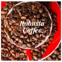 High quality Vietnamese Robusta Coffee beans thumbnail image