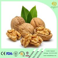 2017 Crop best quality walnut kernel